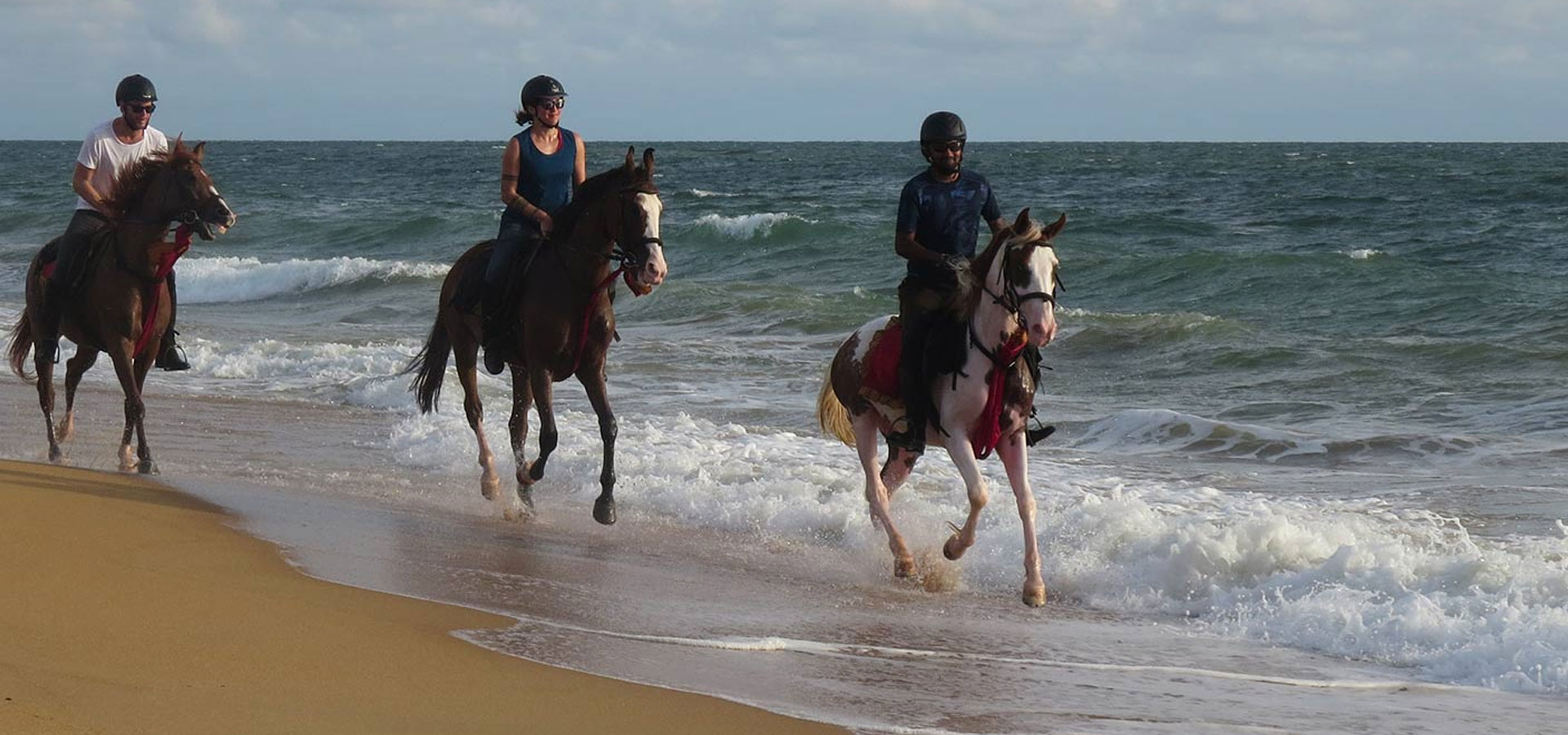 Sri Lanka Horse Riding Tours, Horse Riding in Sri Lanka