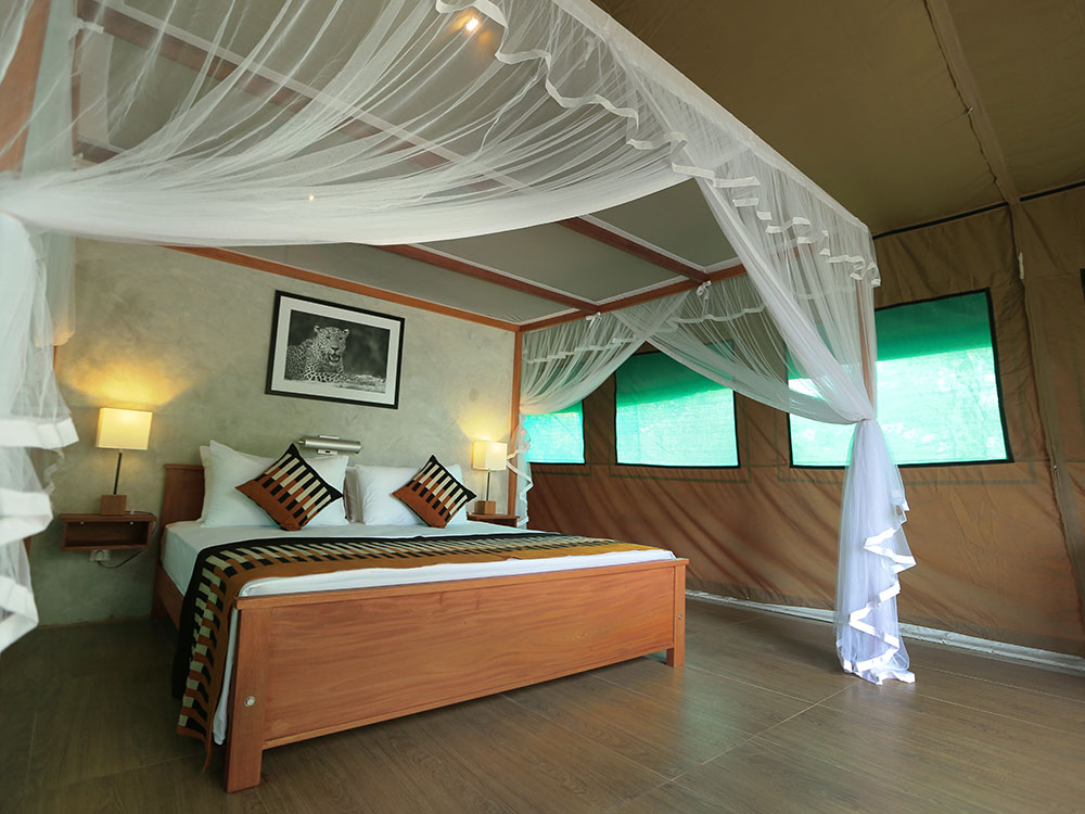Safari Camping in Udawalawe, Safari Safari Camping, Udawalawe Safari Camp, Yala Safari Camping Tours, Yala Safari Camping, Kumana Safari Camping Tours, Safari Camping Tours in Wilpattu, Tented Safari Camping in Yala, Wilpattu Safari Camp, Safari Camping in Wilpattu, Udawalawe Safari Camping, Kumana Safari Camp, Safari Camping in Kumana