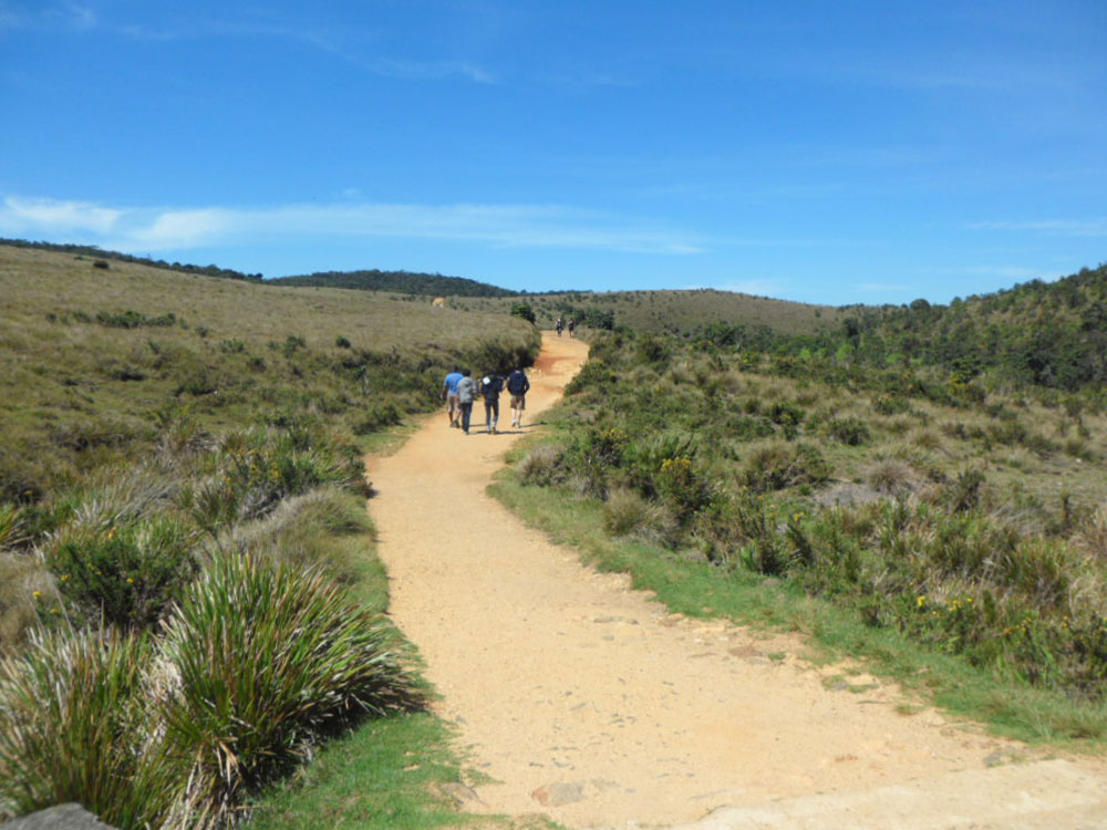 Attractions in Horton Plains - Top Things to do in Horton Plains - Horton Plains experiences - Best things to do in Horton Plains - Places to Visit in Horton Plains - Leisure places in Horton Plains