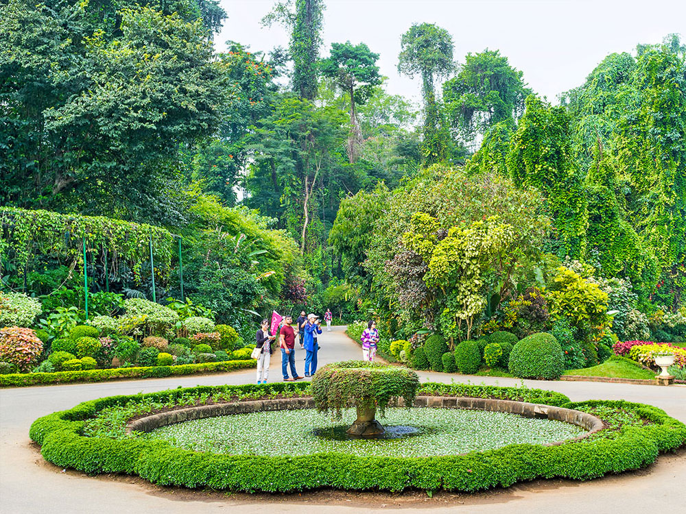 Attractions in Kandy - Top Things to do in Kandy - Kandy experiences - Best things to do in Kandy - Places to Visit in Kandy - Leisure places in Kandy